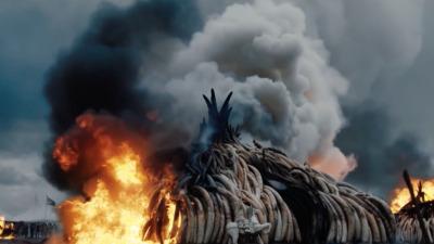 WHEN LAMBS BECOME LIONS - Jon Kasbe