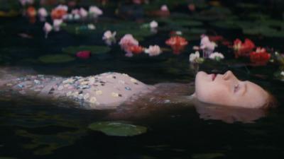 DAISY CODE - Laura Carnet