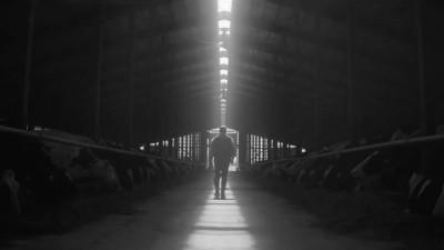 DAIRY FARMERS OF ONTARIO - Hubert Davis