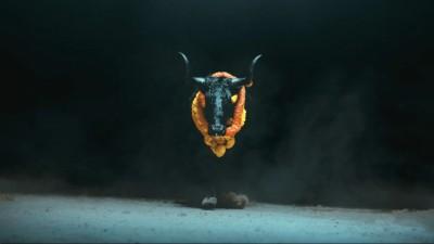 "FOALS ""Black Bull"" - Niall O'Brien"